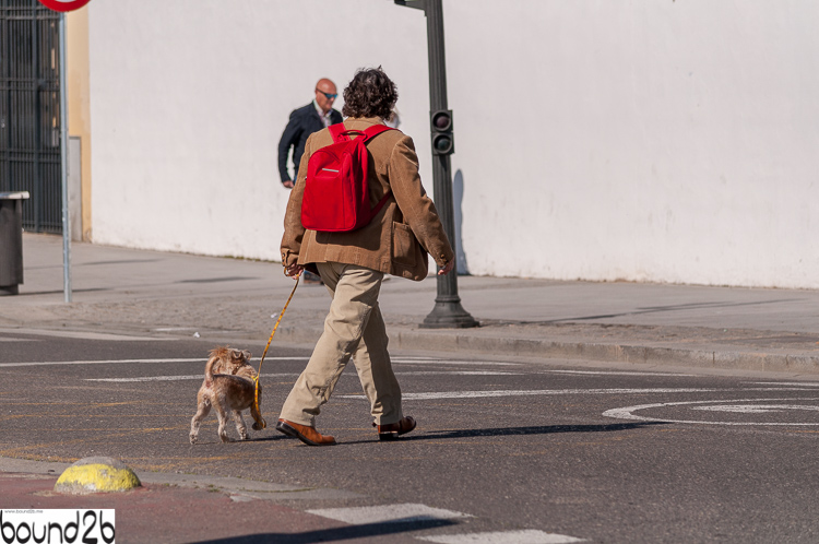 Man_with_dog2